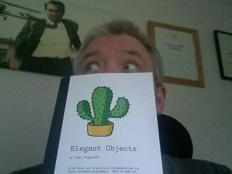 Lee with Elegant Objects book